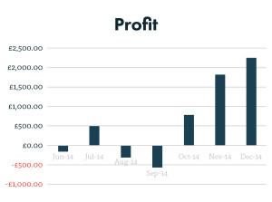 PPC profit graph after 7 months