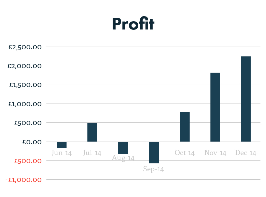 PPC profit graph after 7 months
