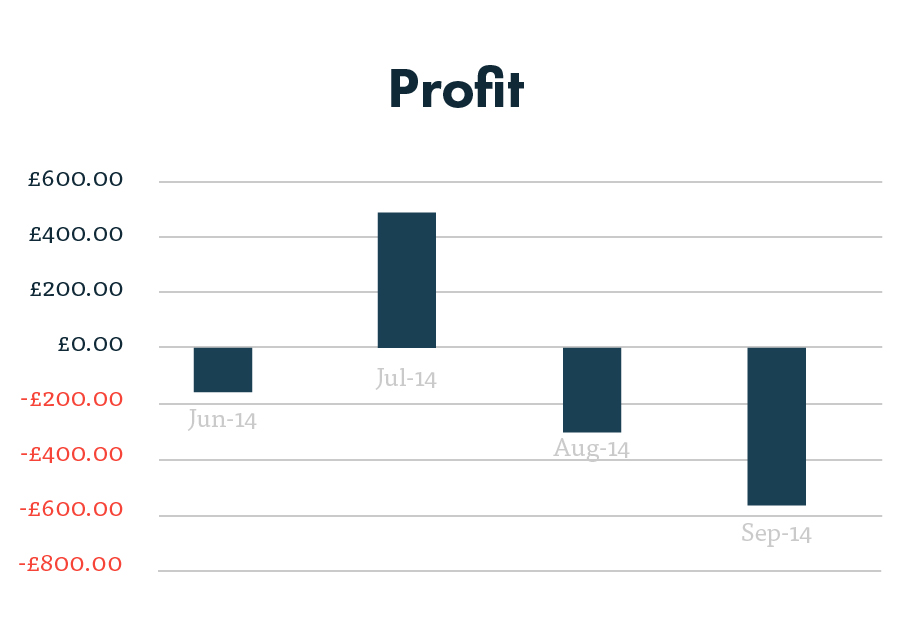 PPC profit graph after 4 months