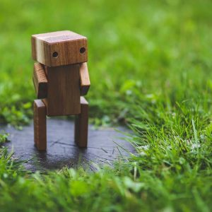 What are chatbots and why do you need one?