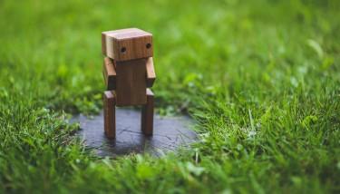 robot-grass