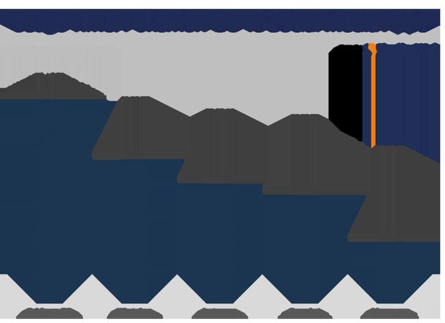 pokemon v social