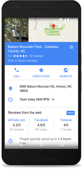 Google Reviews from the web in Google Search
