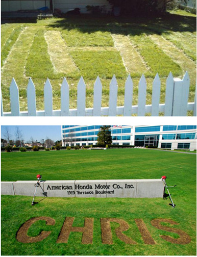 Honda carved a Facebook user's name into its lawn