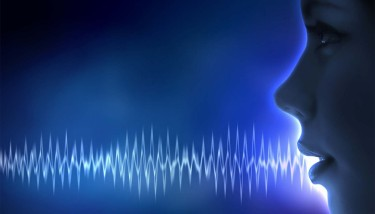 Voice waves