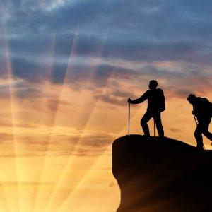 Do successful businesses still need SEO?