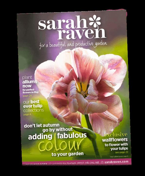 Sarah Raven brochure cover