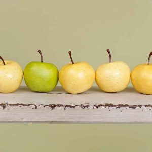 5 apples in a row with one greener than the rest