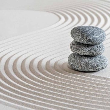 November wellbeing session: CBT for sleep