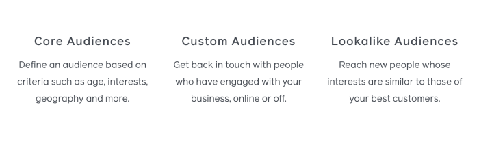 the different audiences on facebook advertising
